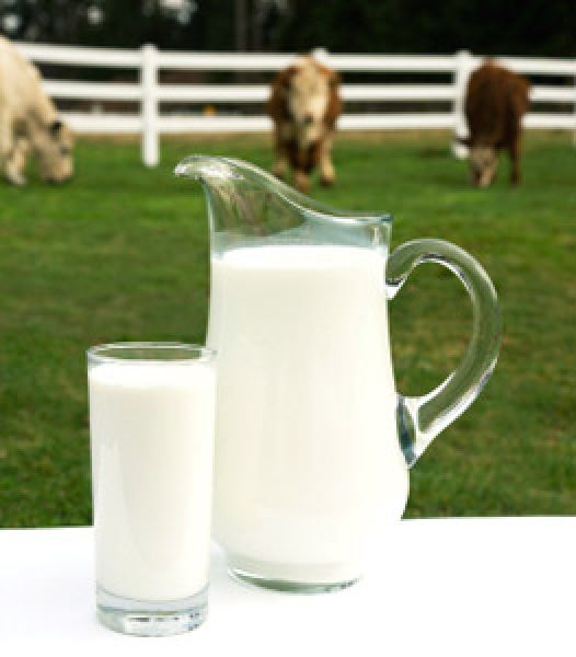 263x300-real_cow_milk